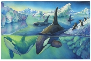 Orcas and Penguins